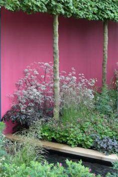 Contemporary, modern garden, flower border, pink wall Photography: Modeste Herwig; Design: Robert Myers; Location: Chelsea Flower Show 2013... copyright Maayke de Ridder Photography