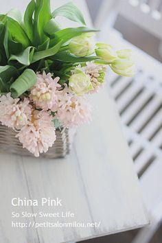 ヒアシンス『チャイナ・ピンク』一年に一度はこのチャイナ・ピンクを手にしたくなります。控えめなピンク、香り、私にとって、たくさんある花の中で、1番、2番を争うく…