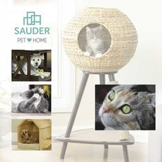 Are you kitten me?! Sauder is now offering pet furniture!