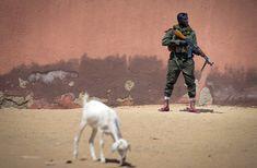 Malian army soldier Sekou Bolly 30 holds an assault rifle as he patrols in Gao on February 25 Kalashnikov Rifle, Jackie Brown, The Black Cauldron, Waiting For Someone, Army Soldier, Pakistan News, Assault Rifle, Modern Warfare, Soviet Union