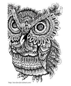 coloring-adult-owl-big-eyes.jpg (1073×1303)