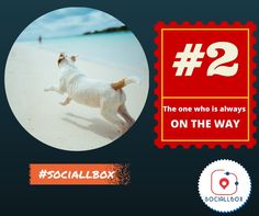 The one who is always on the way ! 10 types of friends you find in every group. www.sociallbox.com