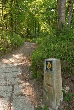 El Camino a su paso por Negreira