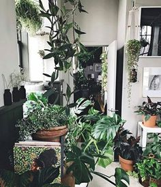 But as time goes on, you're getting the hang of it and your plants are looking lusher and happier. | 19 Struggles You'll Understand If You're A Bad Houseplant Owner