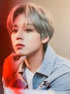 Park Jihoon Produce 101, Korean Anime, 3 In One, Jinyoung, K Idols, Korean Actors, Cute Boys, Parks, Singer