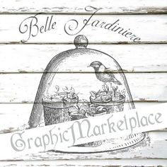 Belle Jardiniere Cloche Garden Seeds Instant by GraphicMarketplace $1