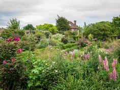Sissinghurst Rose Garden, Kent