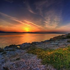 Sun, sea, rocks and flowers by Giorgos~ on Flickr.