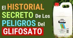 Un investigador descubre que un documento de Monsanto revela que por 30 años han sabido que el glifosato puede causar adenomas y cancer. http://articulos.mercola.com/sitios/articulos/archivo/2015/07/05/el-glifosato-y-el-cancer.aspx