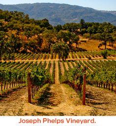 Joseph Phelps Vineyards