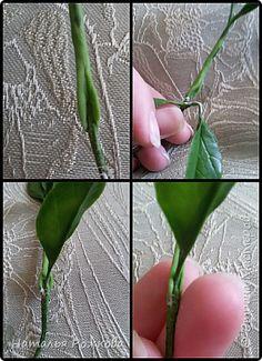 Сборный МК по сборке веточек,креплению листиков,чашелистиков, и лепке декоративной зелени. фото 5