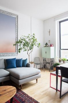 Bright living space with an indoor plant, a gray sofa, and colorful throw pillows