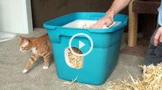 SUPER NÁPAD: - Jak vytvořit kočičkám teplý pelíšek na zimu?
