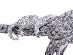 Pangolin Baby Anteater Animal Watercolor by LydiasWildlifeArt
