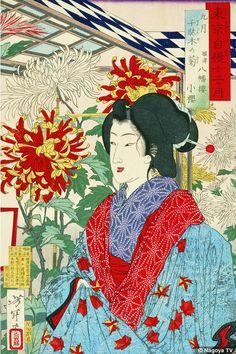 「東京自慢十二ヶ月 九月千駄木の菊 根津八幡楼小桜」 芳年