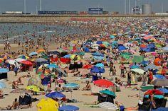 O mês de julho foi o mais quente da história moderna no planeta Terra…