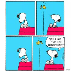 The Trampoline, Snoopy and Woodstock                              …