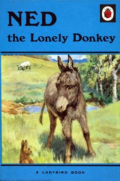 Ned the Lonely Donkey. A ladybird book. When I was about 5 or 6 this was my favourite book. I remember reading it over and over again.