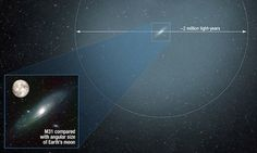 Does our galaxy have a HALO?