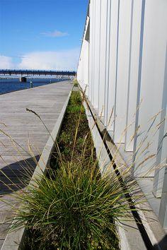 På Aalborgs Havnepromenade har Aarhus Cementvarefabrik leveret de fine lange plantekummer langs kajen. Large Garden Planters, Aalborg, Aarhus, Bruges, Patio, Large Planter Boxes