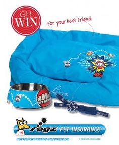 Win a Rogz Pet Insurance Comic Hamper for your Furry Friend