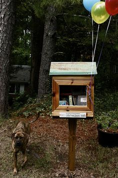 NORTH CAROLINA, Durham  #3598 Little Free Libraries, Little Library, Free Library, Community Library, Community Building, Library Inspiration, Librarians, Southern Charm, Durham