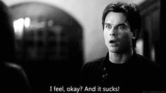 Find images and videos about black and white, quote and the vampire diaries on We Heart It - the app to get lost in what you love. Damon Salvatore Vampire Diaries, Vampire Diaries The Originals, Damon Quotes, Daimon Salvatore, Vampire Diaries Quotes, Vampire Quotes, Friends Episodes, Vampier Diaries, Original Vampire