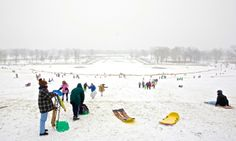 Sledding on Art Hill in Forest Park  Tuesday, Jan. 27, 2009 © Photo by Jerry Naunheim Jr.