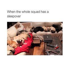 Squad stuff