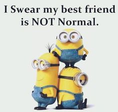 Top 30 Funny Best Friend Quotes