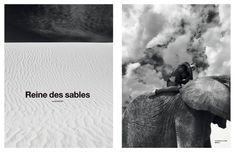 Numéro: Reines de Sables by Koto Bolofo — Creative Exchange Agency Exotic Pets, Exotic Animals, Artist Management, Film Director, Artistic Photography, Creative Director, Fine Art, Movie Posters, Art Photography