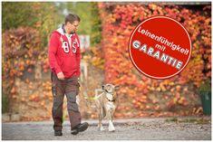 In 30 Minuten läuft Ihr Hund locker an der Leine. Leinenführigkeit mit Garantie buchen.