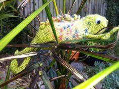 Calma chameleon