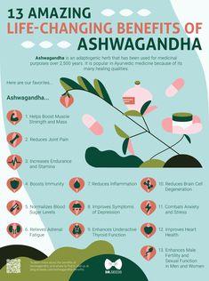 13 Ashwagandha benefits for your thyroid health [INFOGRAPHIC] - Health Medical Ayurveda, Lemon Benefits, Coconut Health Benefits, Matcha Benefits, Ayurvedic Medicine, Natural Medicine, Autogenic Training, Health And Wellness, Mental Health