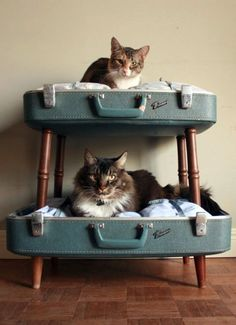 Do you have cats? Than this project is something for you! I've found some inspiring ideas for you to craft your own catbed. 1. Vintage Suitcase Due Cat Bed Do you have a vintage suitcase laying around somewhere? You can make this awesome looking cat bed with an old suit case and some old chair legs. Source: Etsy  2. DIY Wooden Crate Cat Bed This looks so stylish! More info.  3. Wooden Crate Cat Bed With Scratching Post Cute high sleeper for your cat. Source: Pinterest  4. Old Speaker Cat…