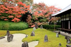 **  Tofukuji Temple (Kyoto, Japan): Address, Phone Number, Tickets & Tours, Reviews - TripAdvisor