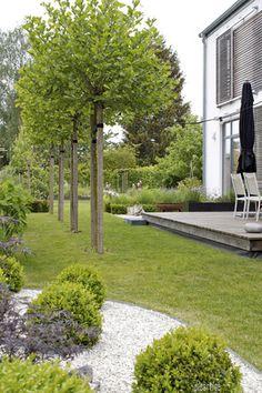 dieartigeGARTEN - Kugelplatanen, Buchsbaum, Gräser, Lärchenholz, Schiebeläden
