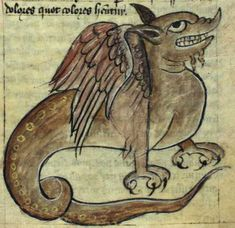 Kongelige Bibliotek, Gl. kgl. S. 1633 4º, Folio 50r A two-legged dragon with feathered wings. It has a long tail, in which its strength lies. This dragon is similar to the one found on folio 3v in this manuscript.