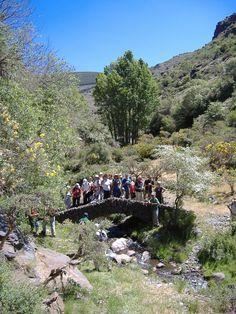 """Rumor Alpujarra Almería, Sierra Nevada, Senda GR-240 """"Sulayr"""", Barranco de Riachuelo"""