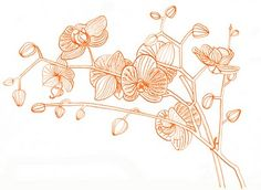 """""""orchids"""" by geninne d. zlatkis"""