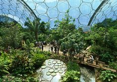 Enter a sub-tropical wonderland and explore the 'garden capital of the world' Eden Project, Great Places, Beautiful Places, Mini Mundo, Places To Travel, Places To Visit, Lost Gardens Of Heligan, Eco City, Parks