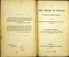 """Ninguna de las primeras cinco de ediciones de """"El origen de las especies"""", la obra cumbre de Charles Darwin, contenía la palabra """"evolución"""". Fue incorporada recién en la sexta, luego que el concepto ya había sido popularizado por Herbert Spencer."""