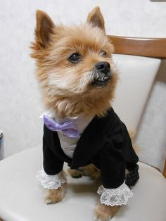 Have a good posture. Formal wear is the work of Mrs Oka.