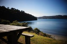 It's really easy to get out of bed at Port William on Stewart Island's Track - this is your breakfast table! Forest Hill, Getting Out Of Bed, Amazing Destinations, New Zealand, Track, River, Island, Mountains, Breakfast