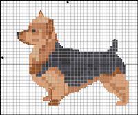 Australisk Terrier