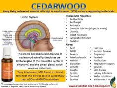 Young Living Cedarwood graphic?