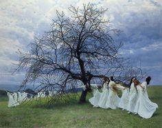 Maximilian Lenz - A Song of Spring, 1913