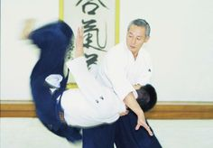 Irime nage / Aikido techniques