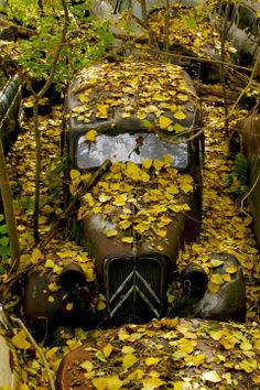 Old Abandoned Houses, Abandoned Places, Abandoned Vehicles, Places Around The World, Around The Worlds, Art Deco Car, Automobile, Citroen Traction, Traction Avant