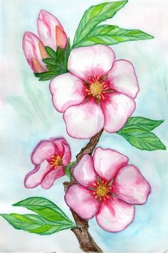 another thing I am going to post is our Art creations. Here is the first one: Apple tree watercolor pencel painting. Original art, water colors by Svetlana Margulis, from Israel. Tree Watercolor Painting, Watercolor Pictures, Watercolor Projects, Watercolor Flowers, Painting & Drawing, Water Paint Art, Round Robin, Watercolor Beginner, Diy Canvas Art